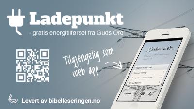 Ladepunkt.net